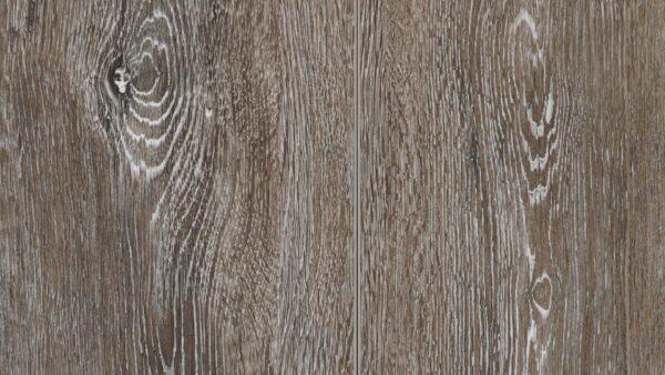 CORETEC WOOD XL+50LVP956-evp-vinyl-flooring-roomscene