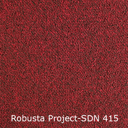 Tapijt - Interfloor Robusta Project-SDN 415