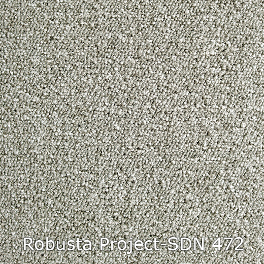 Tapijt - Interfloor Robusta Project-SDN 472