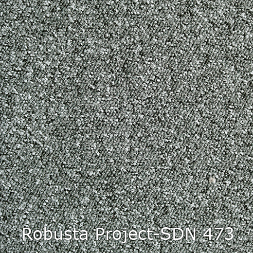 Tapijt - Interfloor Robusta Project-SDN 473