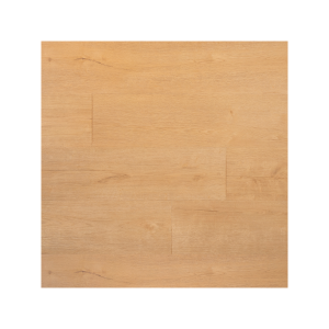 04879 Plank biscuit