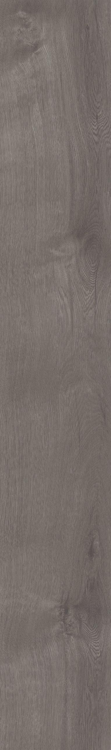 Parva Broad Leaf Grey Sycamore