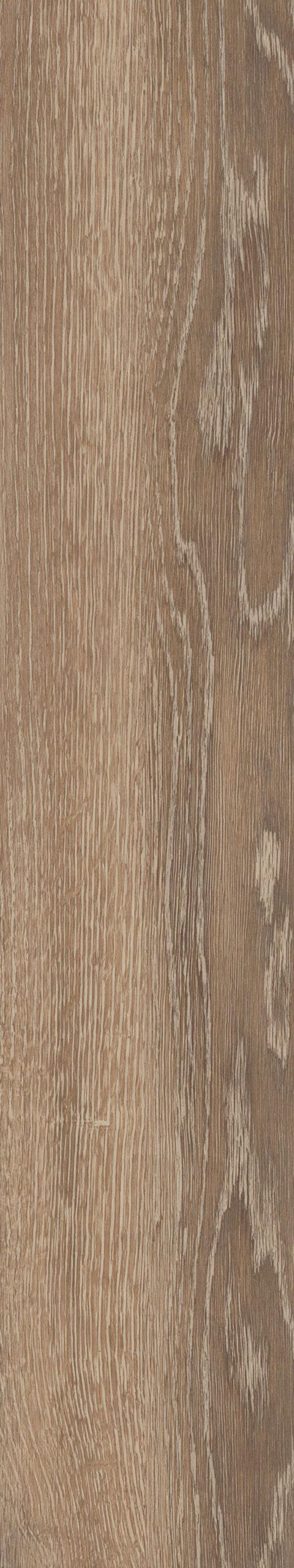 Parva Oak Calabria