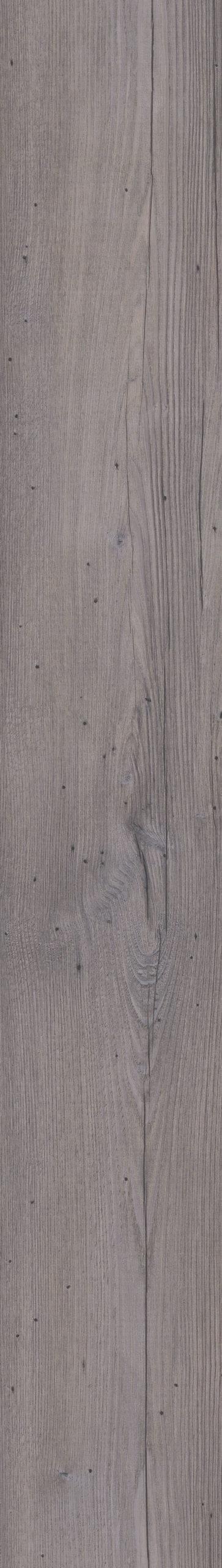 Authentic Plank Sylvian