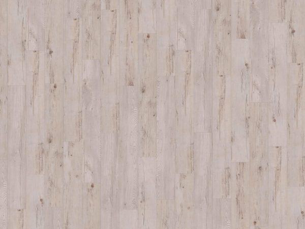 Authentic Plank Dolche