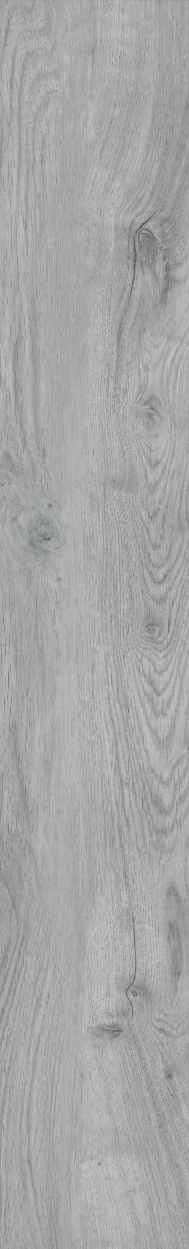 Bramber Chestnut Pippuria