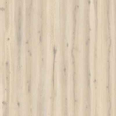 Forest Oak Papyrus 24401225