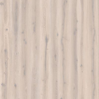 Forest Oak White Washed 24401222