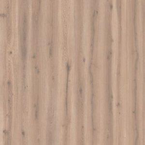 Forest Oak Natural 24401223
