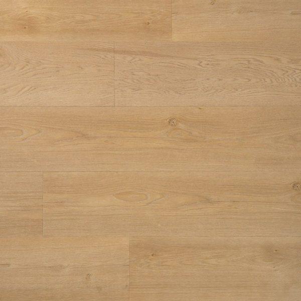 Riante plank boterkoek - PVC-plak